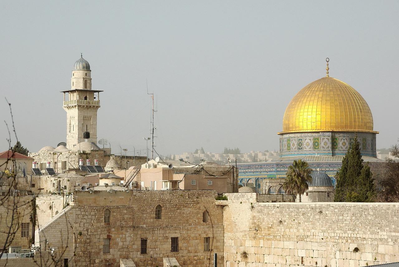Palestine Needs Assessment of SESOs